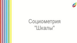Социометрия Шкалирование